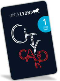 Lyon City Card 1 jour : Adulte