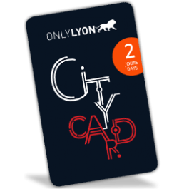 Lyon City Card 2 jours : Adulte