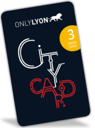 Lyon City Card 3 jours : Adulte