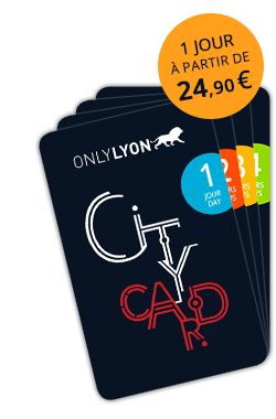 Lyon City Card Pass Loisirs Culture Visite Et Transport De